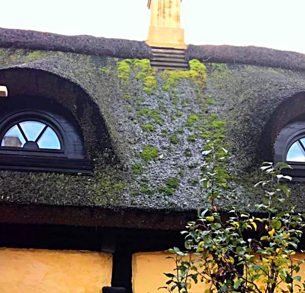 gamle gule huse med stråtag